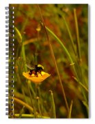 A Bumble In A Cup Spiral Notebook