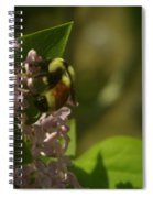A Bumble Spiral Notebook