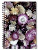 A Bushel Of Autumn Spiral Notebook