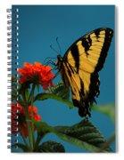 A Butterfly Spiral Notebook