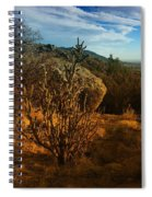 A Cactus In The Sandia Mountains Spiral Notebook