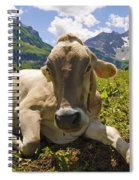 A Calf In The Mountains Spiral Notebook