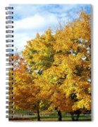 A Chromatic Fall Day Spiral Notebook