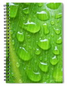 A Cleansing Morning Rain Spiral Notebook