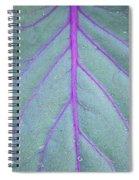 A Closer Look Spiral Notebook