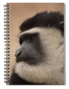 A Colobus Monkey Spiral Notebook