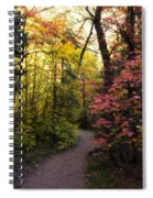 A Colorful Path  Spiral Notebook
