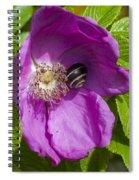 A Comfortable Home Spiral Notebook