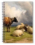 A Cow And Five Sheep Spiral Notebook