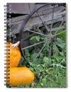 A Crop Of Pumpkins Spiral Notebook