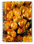 A Crowd Of Crocuses Spiral Notebook