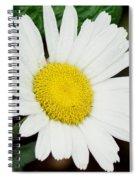 A Daisy If You-do Spiral Notebook