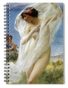 A Dance By The Sea Spiral Notebook