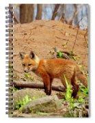A Day At The Den Spiral Notebook