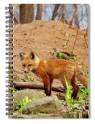 A Day At The Den Spiral Notebook