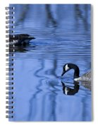 A Day At The Lake Spiral Notebook