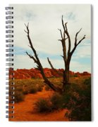 A Dead Tree Foreground A Maze Of Rocks Spiral Notebook
