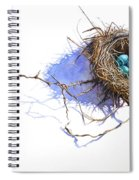 A Delicate Balance Spiral Notebook