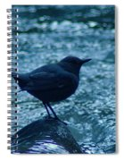 A Dipper On A Rock Spiral Notebook