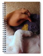 A Dream Of Reaching The Top Spiral Notebook