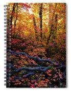 A Fall Forest  Spiral Notebook