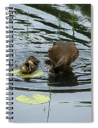 A Family Spiral Notebook