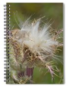 A Feather's Weight In Gold Spiral Notebook