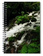 A Fern On An Isalnd  On Wahkeena Creek Spiral Notebook