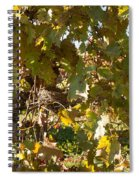 A Few Grapes Left For The Birds Spiral Notebook