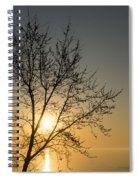 A Filigree Of Branches Framing The Sunrise Spiral Notebook