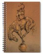 A Fine Balance Spiral Notebook