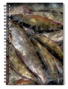 A Fine Catch Of Trout - Steel Engraving Spiral Notebook