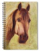 A Fine Horse Spiral Notebook