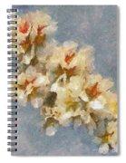 A Flourishing Cherry Branch Spiral Notebook