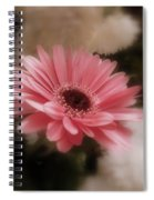 A Flower For Brooke Spiral Notebook