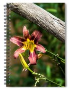 A Flower Frame Spiral Notebook