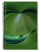 A Fly And His Shadow Polar View Spiral Notebook