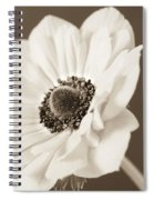 A Focus On The Details Spiral Notebook