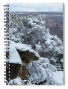 A Foot At The Canyon Spiral Notebook