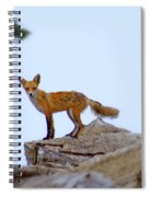 A Fox On The Rocks Spiral Notebook