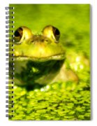 A Frogs Day Spiral Notebook