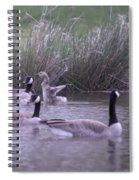 A Frolicsome Goosling Spiral Notebook
