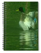 A Frolicsome Mallard Spiral Notebook