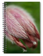 A Furry Little Blossom Spiral Notebook