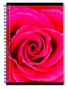 A Fuschia Pink Rose Spiral Notebook