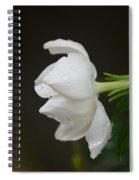 A Gardenia Profile Spiral Notebook