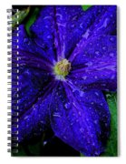 A Gentle Rain Spiral Notebook