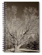 A Giant Sleeps Sepia Spiral Notebook