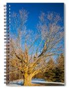 A Giant Sleeps Spiral Notebook