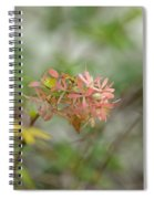 A Glimpse Of Spring To Come Spiral Notebook